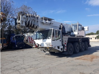 Grue mobile Demag AC80-1